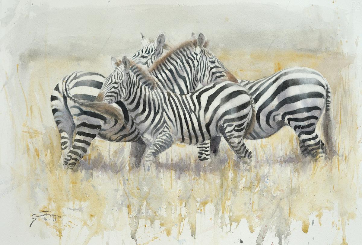 Zebras 22x15