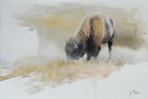 Dusting Buffalo 15x22